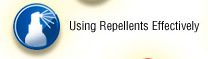 Using Repellents Effectively